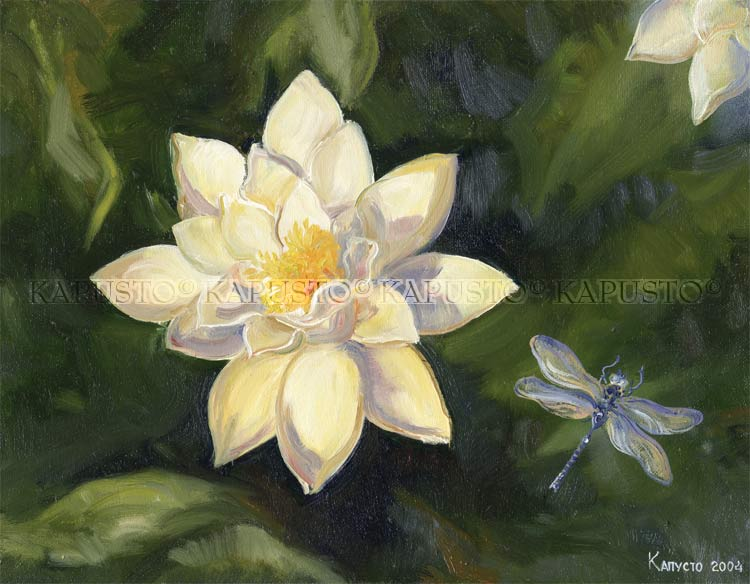 Pavel Kapusto : Water lily oil on canvas , 12x16 ins.