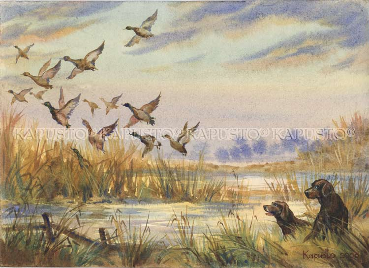 Pavel Kapusto : Duck hunting watercolor , 8x12 ins.