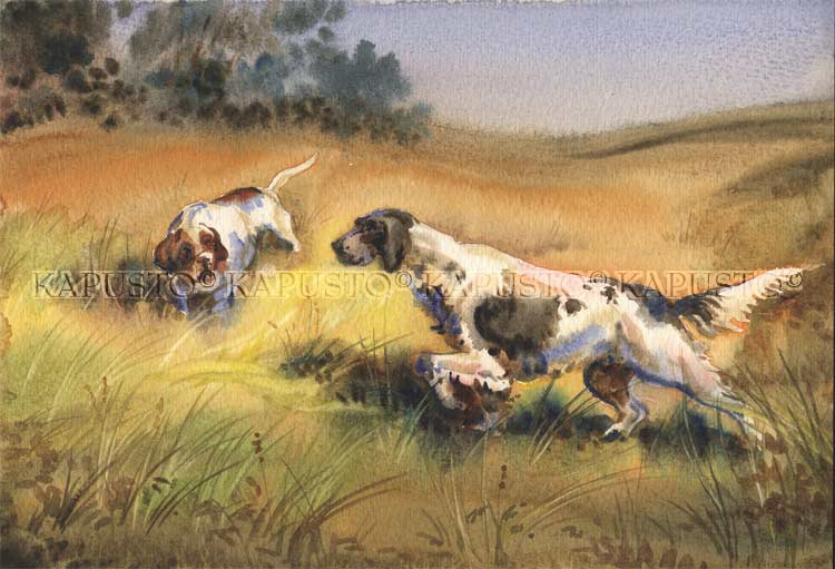 Pavel Kapusto : Setter and Pointer on Point watercolor , 8x12 ins.