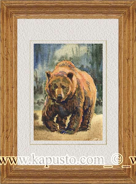 Pavel Kapusto : ACEO : Bear watercolor , 2,5x3,5 ins.